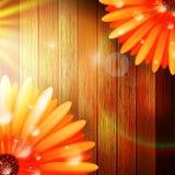 Λουλούδι με τη δροσιά στο ξύλο συν EPS10 Στοκ Εικόνες