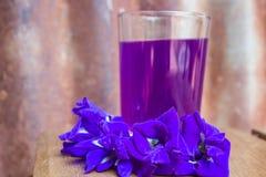 Λουλούδι μπιζελιών πεταλούδων, χυμός μπιζελιών πεταλούδων Στοκ φωτογραφία με δικαίωμα ελεύθερης χρήσης