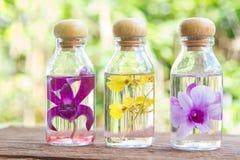 Λουλούδι ορχιδεών στα μπουκάλια γυαλιού στοκ εικόνα