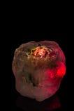 Λουλούδι πάγου Στοκ εικόνες με δικαίωμα ελεύθερης χρήσης