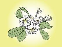 Λουλούδι παγοδών απεικόνιση αποθεμάτων
