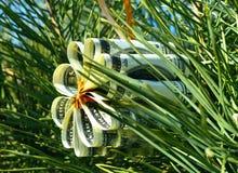 Λουλούδι παιχνιδιών Χριστουγέννων φιαγμένο από λογαριασμούς δολαρίων στον κλάδο των ερυθρελατών Στοκ φωτογραφίες με δικαίωμα ελεύθερης χρήσης