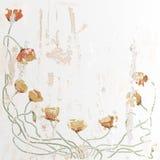 Λουλούδι παπαρουνών Ελεύθερη απεικόνιση δικαιώματος