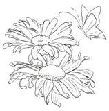 Λουλούδι περιλήψεων για τη ζωγραφική Στοκ φωτογραφία με δικαίωμα ελεύθερης χρήσης