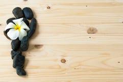 Λουλούδι στην ομάδα μαύρης πέτρας Στοκ φωτογραφία με δικαίωμα ελεύθερης χρήσης