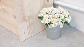 Λουλούδι στον κάδο Στοκ Εικόνες