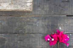 Λουλούδι στον πίνακα Στοκ Εικόνα