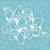 Λουλούδι στο μπλε υπόβαθρο Στοκ φωτογραφίες με δικαίωμα ελεύθερης χρήσης