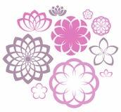 Λουλούδι Σύνολο εικονιδίων Στοκ Εικόνες