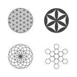 Λουλούδι της ζωής εικονίδια που τίθενται στοιχεία τέσσερα σχεδίου ανασκόπησης snowflakes λευκό απεικόνιση αποθεμάτων