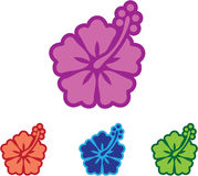 Λουλούδι της Χαβάης ελεύθερη απεικόνιση δικαιώματος