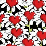 Λουλούδι του άνευ ραφής σχεδίου αγάπης Κόκκινη καρδιά με τα άσπρα πέταλα Στοκ Φωτογραφία