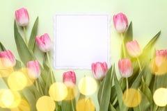 Λουλούδι τουλιπών με τη ευχετήρια κάρτα Στοκ Εικόνα