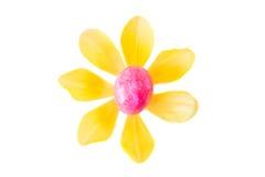 Λουλούδι φιαγμένο από ρόδινο αυγό Πάσχας και κίτρινο άνθος τουλιπών Στοκ Φωτογραφία