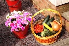 Λουλούδι & φυτική πώληση Στοκ φωτογραφία με δικαίωμα ελεύθερης χρήσης