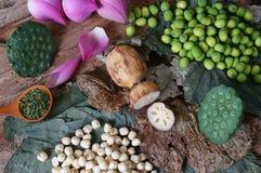 Λουλούδι λωτού συλλογής, σπόρος, τσάι, υγιή τρόφιμα Στοκ φωτογραφίες με δικαίωμα ελεύθερης χρήσης