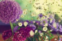 Λουλούδι Στοκ φωτογραφίες με δικαίωμα ελεύθερης χρήσης