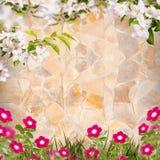 Λουλούδι background_89 Στοκ εικόνες με δικαίωμα ελεύθερης χρήσης