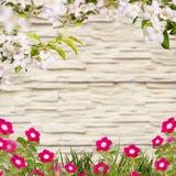 Λουλούδι background_90 Στοκ Εικόνες
