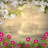 Λουλούδι background_112 Στοκ φωτογραφία με δικαίωμα ελεύθερης χρήσης