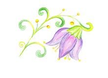 Λουλούδι bluebell που επισύρει την προσοχή σε χαρτί Στοκ φωτογραφία με δικαίωμα ελεύθερης χρήσης