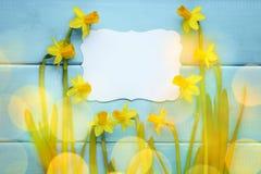 Λουλούδι Daffodil με την κενή κάρτα Στοκ φωτογραφίες με δικαίωμα ελεύθερης χρήσης