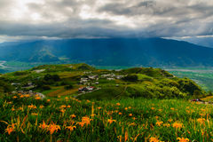 Λουλούδι Daylily στο πέτρινο βουνό εξήντα Στοκ φωτογραφίες με δικαίωμα ελεύθερης χρήσης