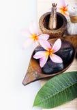Λουλούδι Frangipani με το κερί SPA & aromatherapy έννοια Στοκ φωτογραφίες με δικαίωμα ελεύθερης χρήσης