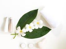 Λουλούδι Frangipani plumeria Spa άσπρο σε ξύλινο, Στοκ Φωτογραφίες