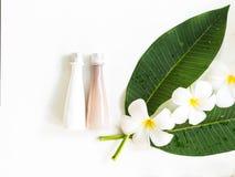 Λουλούδι Frangipani plumeria Spa άσπρο σε ξύλινο, Στοκ φωτογραφία με δικαίωμα ελεύθερης χρήσης