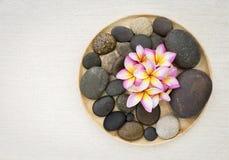 Λουλούδι Plumeria στην πέτρα στο ξύλινο trey με το διάστημα στο υπόβαθρο καμβά Στοκ φωτογραφία με δικαίωμα ελεύθερης χρήσης