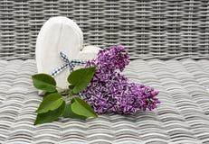 Λουλούδι Sering και μορφή καρδιών αγάπης Στοκ Φωτογραφίες