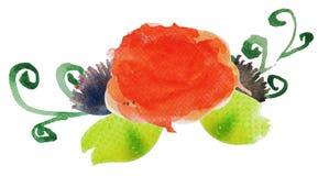 Λουλούδι 5 Watercolor Στοκ Φωτογραφία
