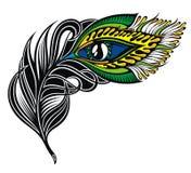 Λοφίο Peacock Φτερό Peacock διανυσματική απεικόνιση