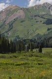 Λοφιοφόρα δύσκολα βουνά του Κολοράντο λόφων Στοκ εικόνα με δικαίωμα ελεύθερης χρήσης