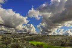 Λοφώδες τοπίο φθινοπώρου Εθνικό πάρκο της Alta Murgia: λιβάδι την άγρια αμυγδαλιά που εξουσιάζεται με από τα σύννεφα Στοκ Φωτογραφίες