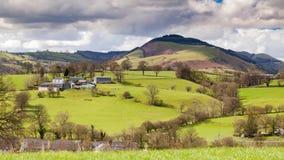 Λοφώδη πράσινα λιβάδια στο χρονικό σφάλμα της βόρειας Ουαλίας απόθεμα βίντεο
