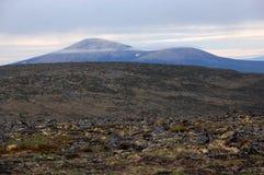 Λοφώδης tundra εσωτερικός της Ρωσίας τοπίων Στοκ φωτογραφία με δικαίωμα ελεύθερης χρήσης
