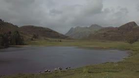 Λούτσοι και Blea Tarn στην περιοχή λιμνών, UK Langdale απόθεμα βίντεο