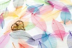 λυγαριά καρδιών Στοκ φωτογραφία με δικαίωμα ελεύθερης χρήσης