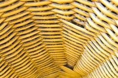 Λυγαριά καλαθοπλεχτικής στοκ φωτογραφία με δικαίωμα ελεύθερης χρήσης