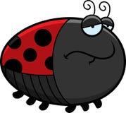 Λυπημένα κινούμενα σχέδια Ladybug Στοκ εικόνα με δικαίωμα ελεύθερης χρήσης