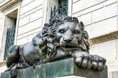 Λυπημένη κλειστή λιοντάρι Cochran στοά της τέχνης Washington DC Στοκ Εικόνες