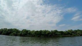 Λωρίδα του δάσους μεταξύ του νεφελωδών ουρανού και του ποταμού απόθεμα βίντεο