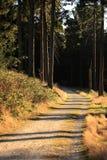λωρίδες σκιών Στοκ εικόνες με δικαίωμα ελεύθερης χρήσης