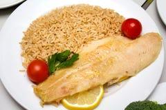 Λωρίδα ψαριών με το ρύζι στοκ εικόνες
