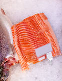 Λωρίδα ψαριών σολομών στον πάγο στο παντοπωλείο στοκ εικόνες