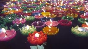 Λωτός κεριών Στοκ φωτογραφίες με δικαίωμα ελεύθερης χρήσης