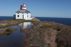 Λόγχη ακρωτηρίων, νέα γη, Καναδάς Στοκ φωτογραφία με δικαίωμα ελεύθερης χρήσης