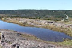 Λόγχη ακρωτηρίων, νέα γη, Καναδάς Στοκ Φωτογραφία